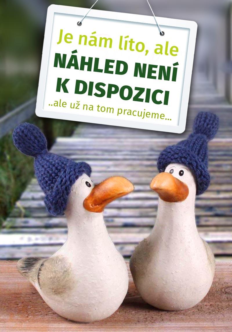 Geni@l - příručka k DVD (Genial)